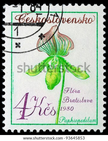CZECHOSLOVAKIA - CIRCA 1980: A stamp printed in Czechoslovakia shows image of a Paphiopedilum, circa 1980