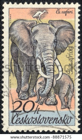 CZECHOSLOVAKIA - CIRCA 1976: A stamp printed in CZECHOSLOVAKIA  shows Loxodonta (elephant), series, circa 1976