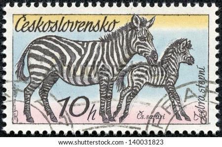 "CZECHOSLOVAKIA - CIRCA 1976: A Stamp printed in CZECHOSLOVAKIA shows the image of the Zebras from the series ""African animals"", circa 1976"