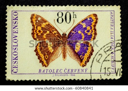 CZECHOSLOVAKIA - CIRCA 1966: A Stamp printed in the Czechoslovakia show the butterfly apatura ilia, circa 1966 - stock photo