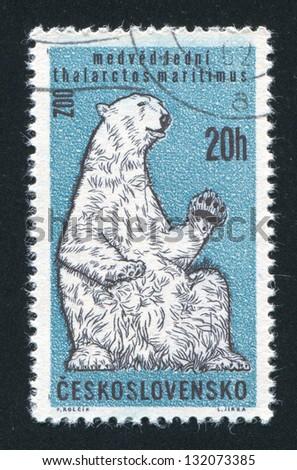 CZECHOSLOVAKIA - CIRCA 1962: stamp printed by Czechoslovakia, shows Polar Bear, circa 1962