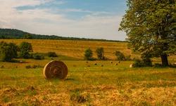 Czeremcha, Poland, Little Beskid, fields