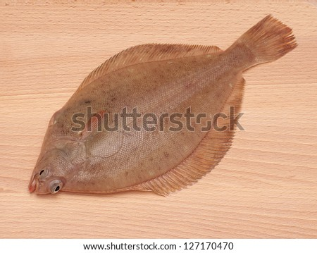 Dab Fish (Limanda limanda)on Wooden Board Background