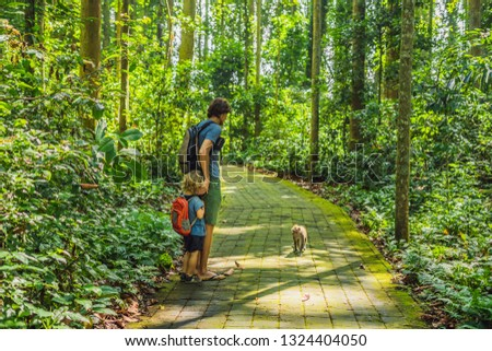 Dad and son travelers discovering Ubud forest in Monkey forest, Bali Indonesia. Traveling with children concept #1324404050