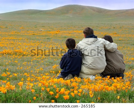 Dad and sons sitting in poppy field