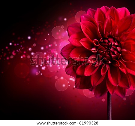 Dahlia Autumn flower design.Over black