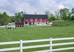 Dairy Barn & Pasture