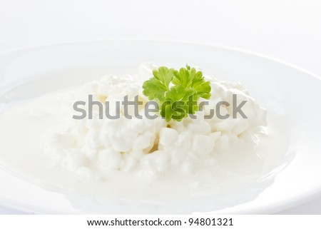Dairy cottage cheese with milk sauce on a white plate