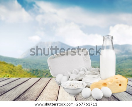 Dairy Product. Fresh eggs and dairy products