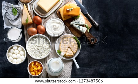 Dairy products.  Milk, cheese, sour cream, cottage, yogurt and butter on dark background. Flat lay with copy space Stockfoto ©