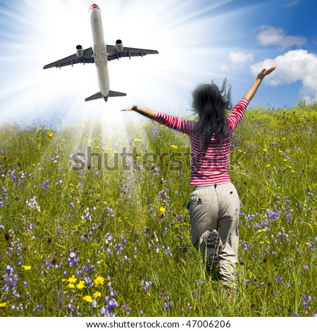 daisy and airplane whith the meadow background outdoor. - stock photo
