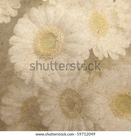 daisy at vintage wallpaper background