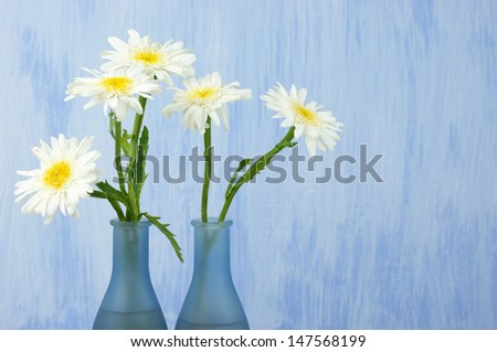 Daisy bouquet in vase on grunge background.