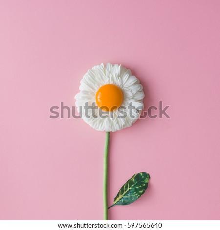 Daisy flower with egg yolk. Minimal concept. Flat lay. #597565640