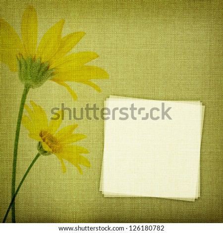 Daisy flowers on fabric texture with copy space