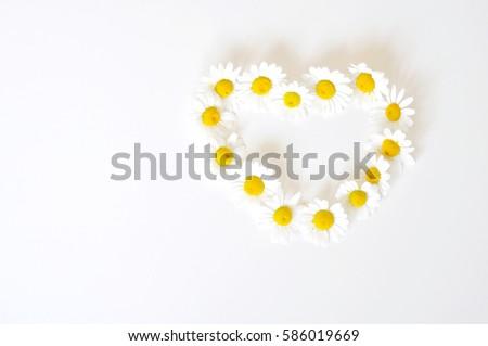 Daisy heart - love, love, love everywhere #586019669