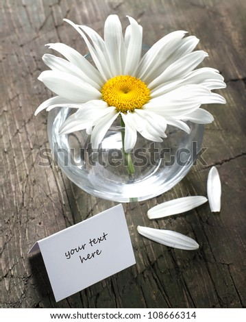 Daisy in the vase and paper card on a vintage wooden surface