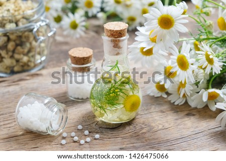 Daisy infusion bottle, Chamomile flowers,  Bottles of homeopathic globules and glass jar of dry daisies. #1426475066