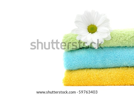 Daisy on a pile of colorful clean folded towels