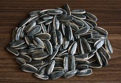 dakota sunflower seeds in shell