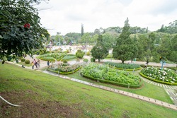 DALAT CITY, VIETNAM April 17, 2021: Love valley in Dalat Vietnam is one of the most romantic sites of Dalat city, with many deep valleys and endless pine forests.
