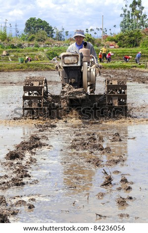 DALI, CHINA - MAY 25: Unidentified Chinese farmers works hard on rice field on May 25, 2011 in Dali, China. For many farmers rice is the main source of income (around $800 annual).