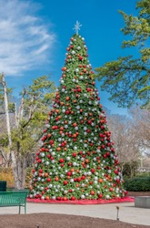 Dallas Arboretum and Botanic Garden in Winter. Christmas tree decorated with red and silver balls