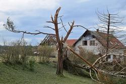 Damage caused by a tornado in June 2021, Stebno, Louny District, Czech Republic.