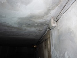 damage caused by dampness and moisture on a ceiling, with droplets of water infiltration