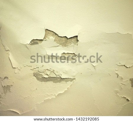 damage caused by dampness and moisture on a wall