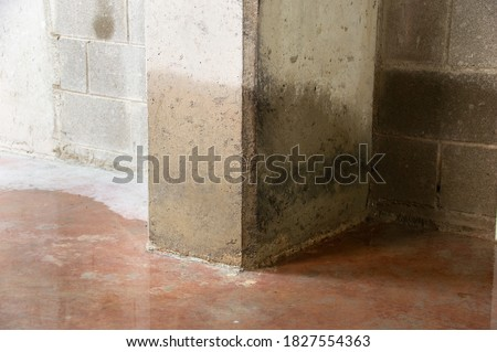 Damage to a concrete column from water in the basement Foto stock ©