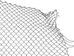 damage wire mesh