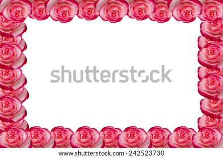 Damask rose frame isolated on white background