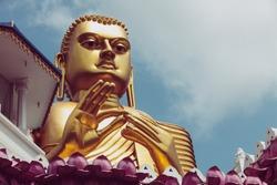 Dambulla, Sri Lanka. July 22, 2016: The Golden Buddha statue, Dambulla golden temple, just below the Cave temple in Dambulla, Sri Lanka.