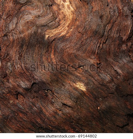 Damp wood macro texture / background