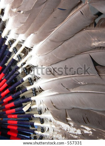 Dance Costume Feathers