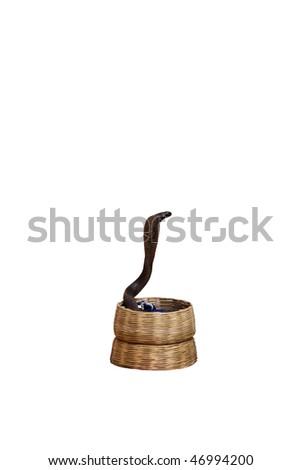 Dancing snake