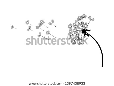 Dandelion in the wind illustration. Dandelion silhouette illustration. Black dandelion isolated on a white background