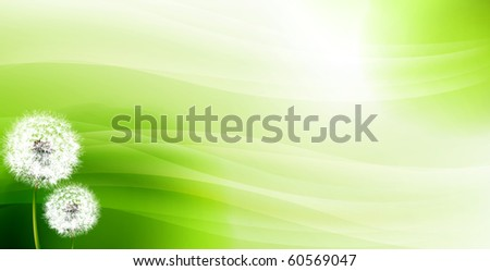 Dandelions against an abstract green background - stock photo