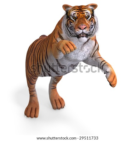 Dangerous Big Cat Tiger With Clipping Path Over White - stock photo