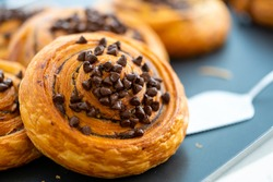Danish Bread With Chocolate Chip Topping