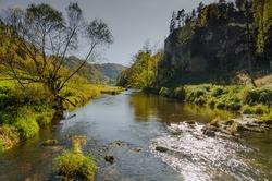 Danube near Fridingen an der Donau, Danube Valley, Upper Danube Nature Park, Baden-Wuerttemberg, Germany