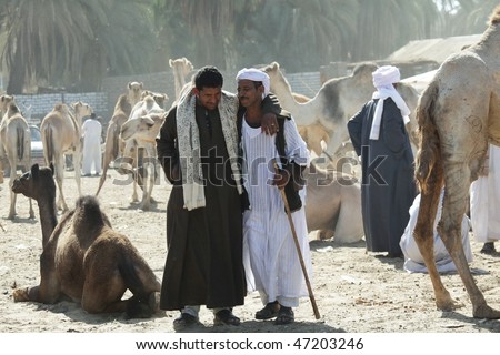 Afrika Stock-photo-daraw-egypt-december-arab-people-are-bargaining-at-weekly-camel-and-livestock-market-on-47203246