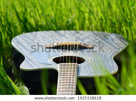 Dark acoustic guitar in green grass. Rest with a musical instrument in nature. #1425158618