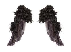 Dark angel wings on white background