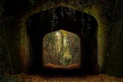 Dark archway in autumn woods