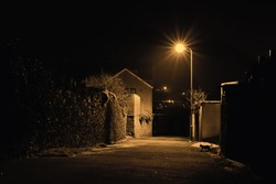 Dark back alley under sodium street lights with cat slinking through the night.