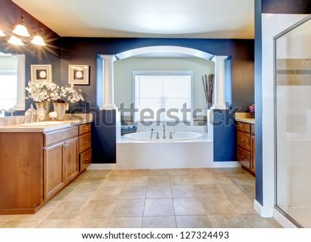 Dark blue classic elegant bathroom interior with columns.