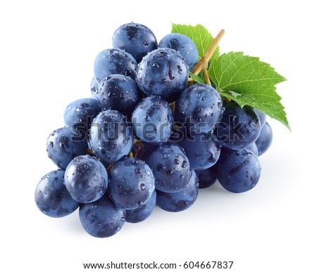 Dark blue grape with leaves isolated on white background. Wet fruit. With clipping path. Full depth of field. #604667837