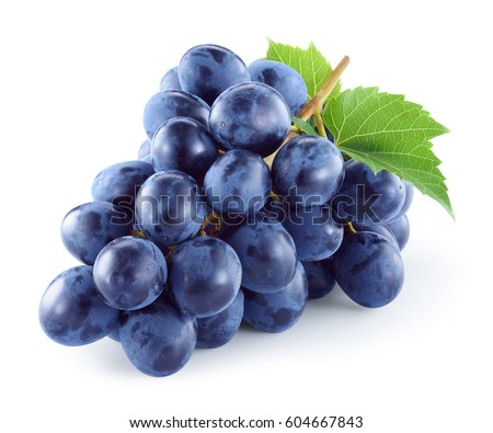 Dark blue grape with leaves isolated on white background. With clipping path. Full depth of field. #604667843